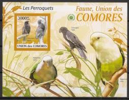 Comores - 2009 - Bloc BF N°Yv. 204 - Perroquets - Non Dentelé / Imperf. - Neuf Luxe ** / MNH / Postfrisch - Cote YT 21€ - Comoros