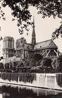 Carte Postale PARIS (75) Cathédrale Notre-Dame 1163-1260 Flèche Tombée Le 15-04-2019 -Eglise-Religion - Churches