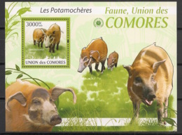 Comores - 2009 - Bloc BF N°Yv. 207 - Potamochères - Neuf Luxe ** / MNH / Postfrisch - Cote YT 21€ - Comoros