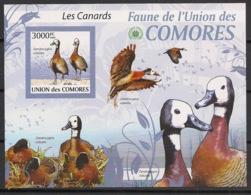 Comores - 2009 - Bloc BF N°Yv. 208 - Canards - Non Dentelé / Imperf. - Neuf Luxe ** / MNH / Postfrisch - Cote YT 21€ - Ducks