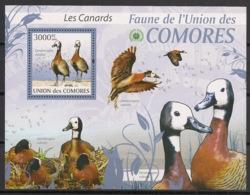 Comores - 2009 - Bloc BF N°Yv. 208 - Canards -Neuf Luxe ** / MNH / Postfrisch - Cote YT 21€ - Comoros