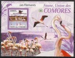 Comores - 2009 - Bloc BF N°Yv. 209 - Flamants - Non Dentelé / Imperf. - Neuf Luxe ** / MNH / Postfrisch - Cote YT 21€ - Comoros