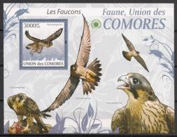 Comores - 2009 - Bloc BF N°Yv. 210 - Faucons - Neuf Luxe ** / MNH / Postfrisch - Cote YT 21€ - Comoros