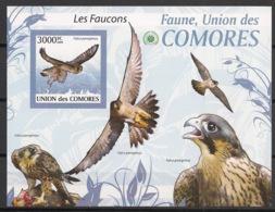 Comores - 2009 - Bloc BF N°Yv. 210 - Faucons - Non Dentelé / Imperf. - Neuf Luxe ** / MNH / Postfrisch - Cote YT 21€ - Eagles & Birds Of Prey