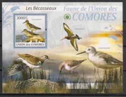 Comores - 2009 - Bloc BF N°Yv. 211 - Bécasses - Neuf Luxe ** / MNH / Postfrisch - Cote YT 21€ - Comoros