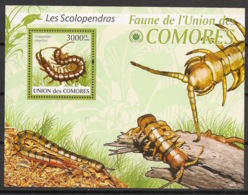 Comores - 2009 - Bloc BF N°Yv. 216 - Insectes - Neuf Luxe ** / MNH / Postfrisch - Cote YT 21€ - Insectes