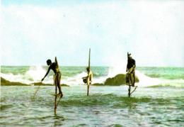 [MD3087] CPM - SRI LANKA CYLON - FISHING FROM STILTS WELIGAMA - Non Viaggiata - Sri Lanka (Ceylon)