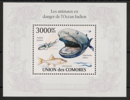 Comores - 2009 - Bloc BF N°Yv. 249 - Poissons - Neuf Luxe ** / MNH / Postfrisch - Cote YT 21€ - Comoros