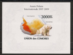 Comores - 2009 - Bloc BF N°Yv. 250 - Ours - Non Dentelé / Imperf. - Neuf Luxe ** / MNH / Postfrisch - Cote YT 21€ - Bears