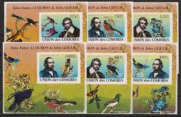Comores - 2009 - KLB N°Yv. 1315 à 1320 - Audubon - Non Dentelé / Imperf. - Neuf Luxe ** / MNH / Postfrisch - Vogels