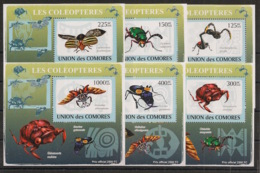 Comores - 2009 - KLB N°Yv. 1423 à 1428 - Coléoptères - Neuf Luxe ** / MNH / Postfrisch - Insectes