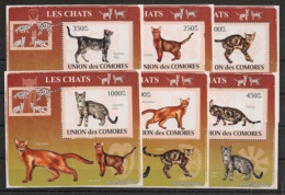 Comores - 2009 - KLB N°Yv. 1441 à 1446 - Chats - Neuf Luxe ** / MNH / Postfrisch - Chats Domestiques