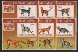 Comores - 2009 - KLB N°Yv. 1441 à 1446 - Chats - Non Dentelé / Imperf. - Neuf Luxe ** / MNH / Postfrisch - Chats Domestiques