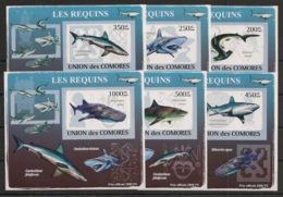 Comores - 2009 - KLB N°Yv. 1483 à 1488 - Requins - Non Dentelé / Imperf. - Neuf Luxe ** / MNH / Postfrisch - Mammifères Marins