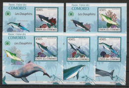Comores - 2009 - KLB N°Yv. 1656 à 1660 - Dauphins - Neuf Luxe ** / MNH / Postfrisch - Dauphins