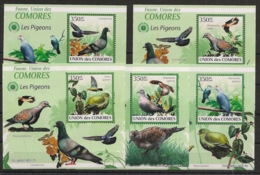 Comores - 2009 - KLB N°Yv. 1681 à 1685 - Pigeons - Neuf Luxe ** / MNH / Postfrisch - Pigeons & Columbiformes