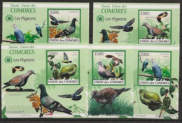 Comores - 2009 - KLB N°Yv. 1681 à 1685 - Pigeons - Non Dentelé / Imperf. - Neuf Luxe ** / MNH / Postfrisch - Pigeons & Columbiformes