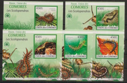 Comores - 2009 - KLB N°Yv. 1746 à 1750 - Scolopendre - Non Dentelé / Imperf. - Neuf Luxe ** / MNH / Postfrisch - Insectes