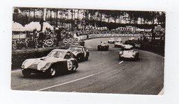 Avr19   84575    Photo 24 H Du Mans 1954   Virages Du Tertre Rouge  Pub Biscottes Dreux Le Mans - Le Mans