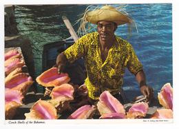Bahamas Conch Shells Of The Bahamas Pêcheur De Coquillages VOIR DOS TIMBRE - Bahamas