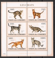 Comores - 2009 - N°Yv. 1441 à 1446 - Chats - Neuf Luxe ** / MNH / Postfrisch - Chats Domestiques