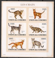 Comores - 2009 - N°Yv. 1441 à 1446 - Chats - Non Dentelé / Imperf. - Neuf Luxe ** / MNH / Postfrisch - Chats Domestiques