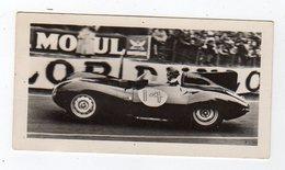 Avr19   84571    Photo 24 H Du Mans 1954   Voiture     Pub Biscottes Dreux Le Mans - Le Mans