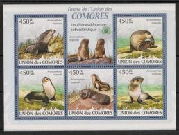 Comores - 2009 - N°Yv. 1731 à 1735 - Otarie - Neuf Luxe ** / MNH / Postfrisch - Mammifères Marins