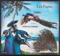 Comores - 2011 - Bloc BF N°Yv. 298 - Paons - Non Dentelé / Imperf. - Neuf Luxe ** / MNH / Postfrisch - Pfauen
