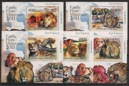 Comores - 2011 - KLB N°Yv. 2165 à 2069 - Fauves - Neuf Luxe ** / MNH / Postfrisch - Félins