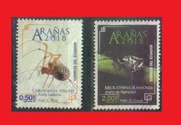 Ecuador, Spiders Araignées Webspinnen Arañas - Ragni