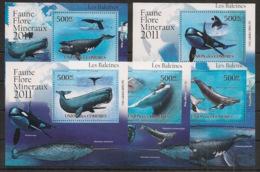 Comores - 2011 - KLB N°Yv. 2245 à 2249 - Baleines - Neuf Luxe ** / MNH / Postfrisch - Balene