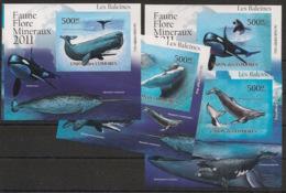 Comores - 2011 - KLB N°Yv. 2245 à 2249 - Baleines - Non Dentelé / Imperf. - Neuf Luxe ** / MNH / Postfrisch - Balene