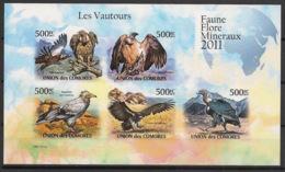 Comores - 2011 - N°Yv. 2175 à 2179 - Vautours - Non Dentelé / Imperf. - Neuf Luxe ** / MNH / Postfrisch - Aigles & Rapaces Diurnes