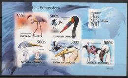 Comores - 2011 - N°Yv. 2220 à 2224 - Echassiers - Non Dentelé / Imperf. - Neuf Luxe ** / MNH / Postfrisch - Cigognes & échassiers