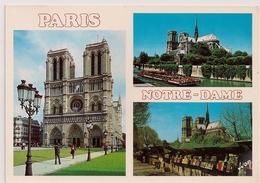 Cpm 75 Paris 1 Cathédrale Notre Dame - Notre-Dame De Paris