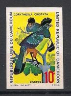 Cameroun - 1972 - N°Yv. 534 - Oiseaux / Birds - Non Dentelé / Imperf. - Neuf Luxe ** / MNH / Postfrisch - Oiseaux