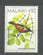 Malawi, 1988 (#516a), Bird, Anthreptes Anchietae, Aves, Oiseaux, Uccelli, Vogel, Pássaros, Ptaki - 1v - Passereaux