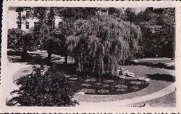 BAINS Les BAINS Jardin Public - Bains Les Bains