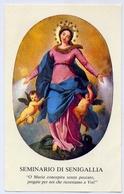 Santino - Maria - Seminario Di Senigallia - 12 - Images Religieuses