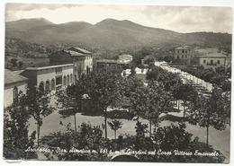 W2642 Arcidosso - Giardini Sul Corso Vittorio Emanuele - Panorama / Viaggiata 1965 - Other Cities