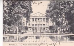BRUXELLES. PALAIS DE LA NATION - CPA CIRCA 1904s - BLEUP - Panoramische Zichten, Meerdere Zichten