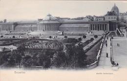BRUXELLES. JARDIN BOTANIQUE. NELS - CPA CIRCA 1904s - BLEUP - Forêts, Parcs, Jardins