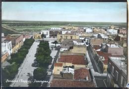 STORNARA - FOGGIA - 1967 - PANORAMA - ACQUERELLATA - Foggia