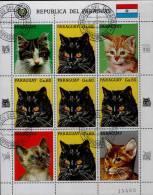CATS / PARAGUAY / COMPLETE VFU SHEET / 5 SCANS . - Chats Domestiques