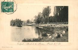 13485386 Trilport Bords De La Marne Schafe Trilport - France
