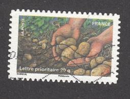 France, Pomme De Terre, Patate, Potato, Potatoe, Légume, Vegetable, Main, Hand - Landwirtschaft