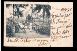 CEYLON  Colombo Bullock Hackery And Ricksha 1903 OLD POSTCARD - Sri Lanka (Ceylon)