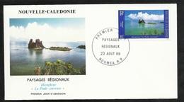 """FDC Lettre Illustrée Premier Jour Nouméa Le 23/08/1989 P.A.N°263 Paysages Hienghéne """" La Poule Couveuse""""     TB - Briefe U. Dokumente"""