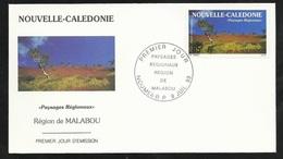 FDC Lettre Illustrée Premier Jour Nouméa Le 08/07/1993 P.A.N°300 Paysages Régionaux Région De Malabou  TB - Cartas